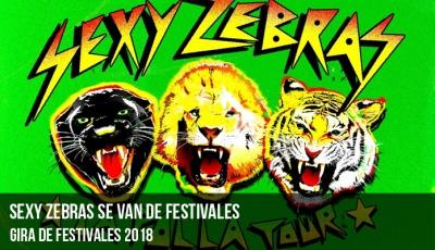 sexy-zebras-se-van-de-festivales