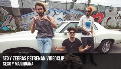 sexy-zebras-estrenan-videoclip